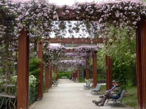 Parc du Passy