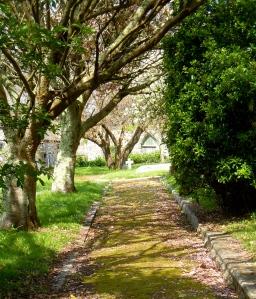 Marazion Memorial Gardens